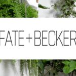 fate-and-becker